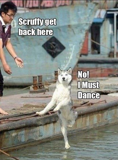 No I must dance!